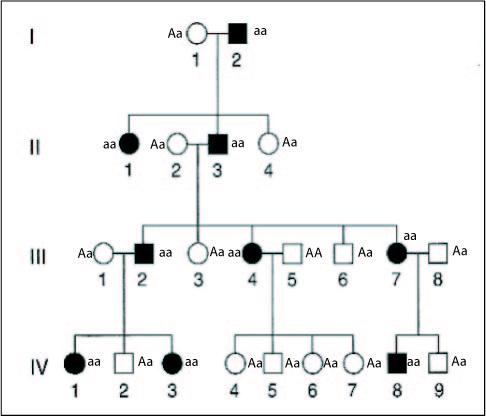 Penetranz Genetik